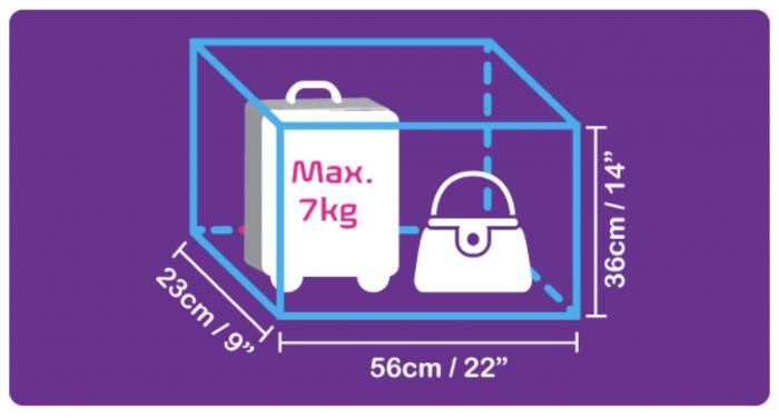 機内持込手荷物の制限
